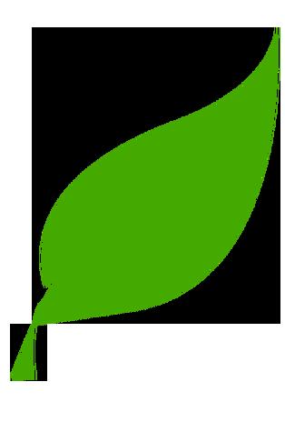 foglia_ambiente